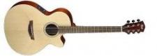 Cort SFX 1F NS - elektroakustická kytara