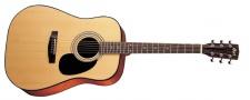 Cort AD 880 NS - akustická kytara