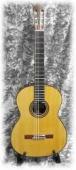 Sakurai Masaki Concert-R - klasická kytara