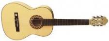 Pro Natura Silver 220 - kytara 7/8