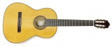 Francisco Esteve model 4 ST smrk - kytara španělka