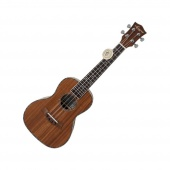 Aiersi SU 074 P - koncertní ukulele s pouzdrem