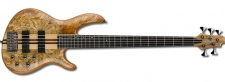 Cort A5 Custom SP NAT - baskytara