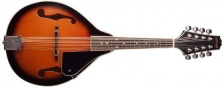 Stagg M20 - bluegrassová mandolína