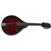 Tenson Folk A 1 F505400 - mandolína
