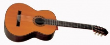 Esteve PS 75 - klasická kontrabasová kytara + kufr