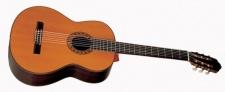 Esteve PS 75 - klasická kontrabasová kytara